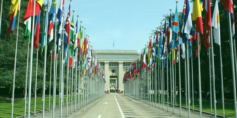 Traduceri pentru organizațiile internaționale